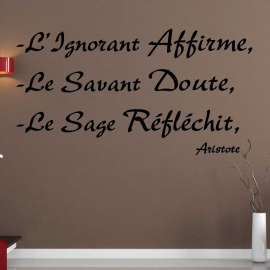 Stickers citation Aristote sur la Sagesse